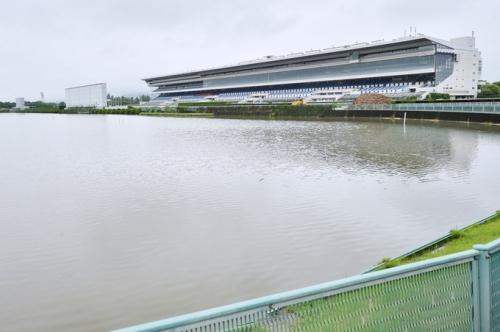 【競馬ネタ】京都競馬場の池全部抜く