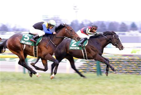【競馬】来週の東京新聞杯がメンバー揃いすぎてヤバイらしいな