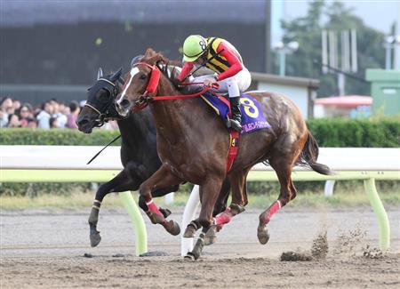 【競馬】大井の女帝ララベル、フェブラリーでラストラン