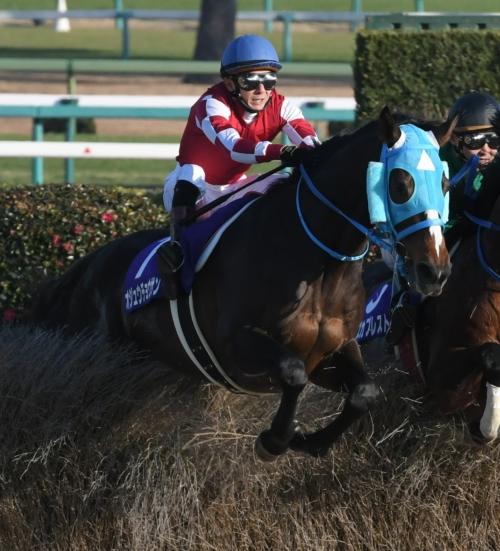 【競馬】オジュウチョウサンがJRAヒーロー列伝ポスターに!82枚目で初の障害馬
