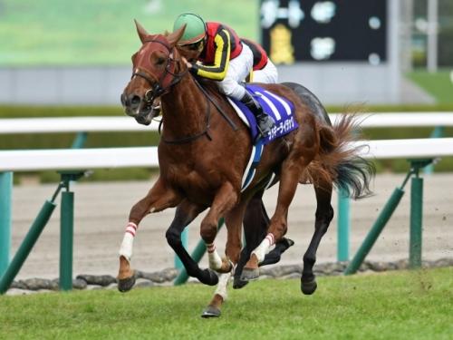 【競馬】最優秀2歳牝馬ラッキーライラック チューリップ賞から春2冠へ 秋に凱旋門賞挑戦プランも