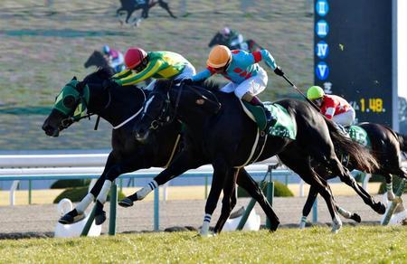 【競馬】きさらぎ賞を勝ったサトノフェイバー 引き続き鞍上古川騎手で皐月賞の前にスプリングSへ