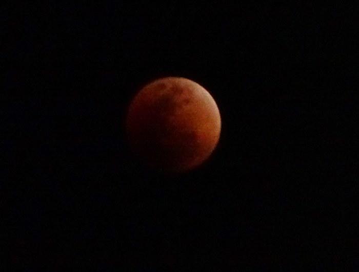 DSC01109皆既月食3