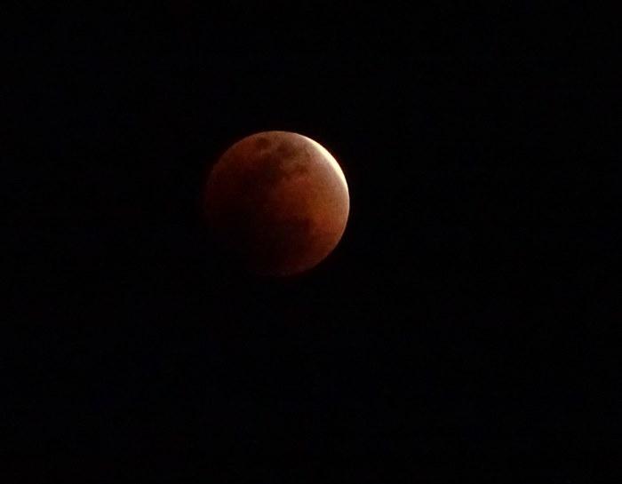 DSC01101皆既月食2