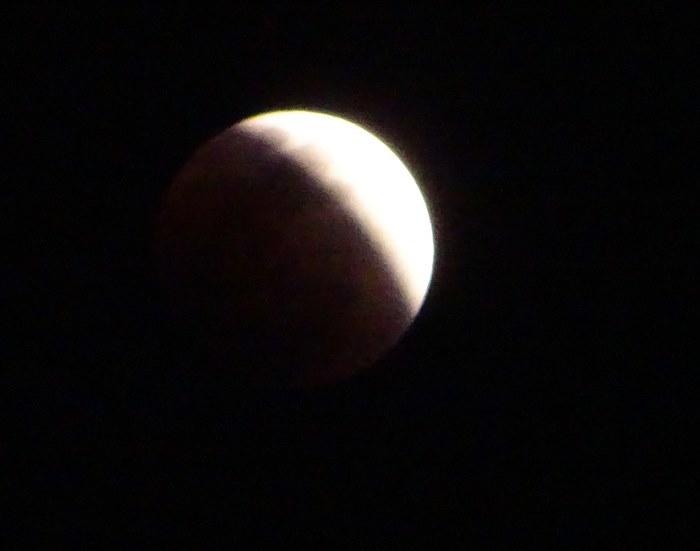 DSC01095皆既月食1
