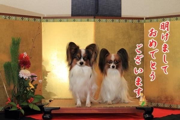2012_12_29 お正月写真IMG_7746