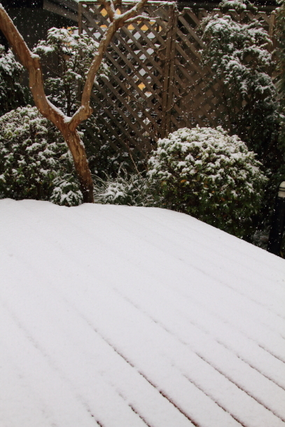 雪4年ぶり00038696