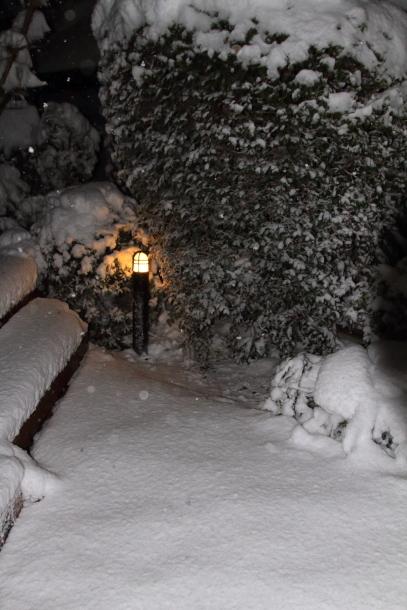 雪4年ぶり00038773