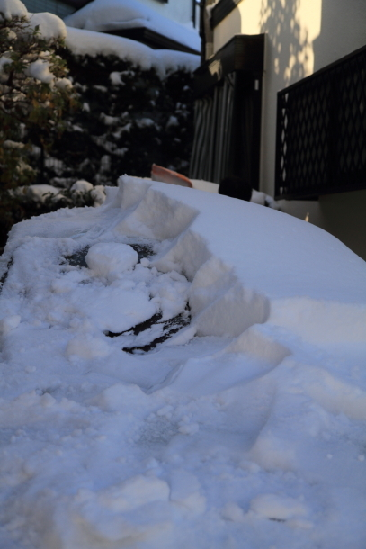 雪4年ぶり00038781