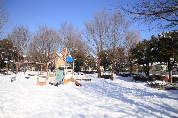 雪4年ぶり00038711