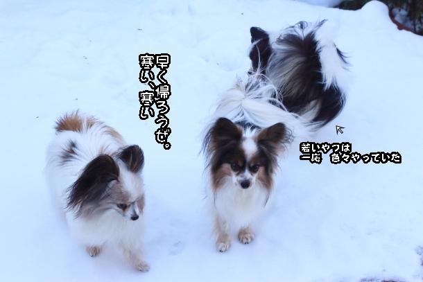 雪翌々日00038844