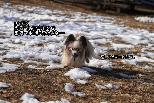 雪00039082