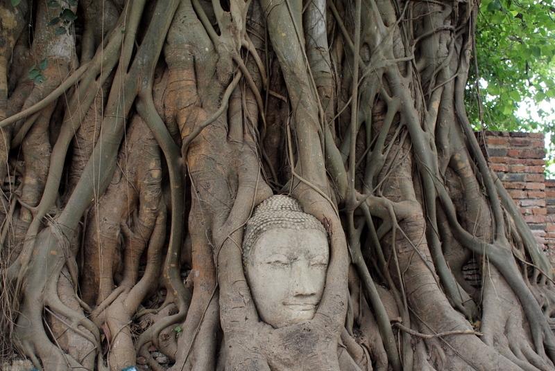 ■ Wat Phra Mahathat(Ayutaya) タイ紀行