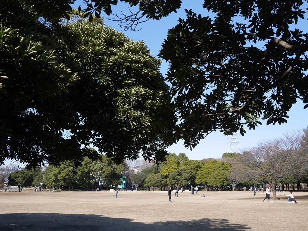 180218岸根公園の春-02