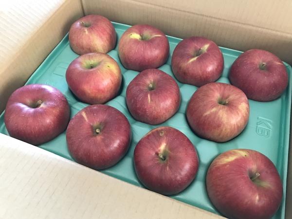 ふるさと納税2017 信州のりんご シナノスイート 5キロセット @長野県 (1)