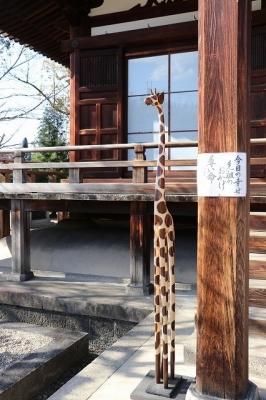 道明寺のキリン