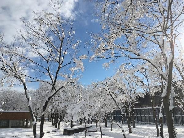 2017-12-18 雪景色3