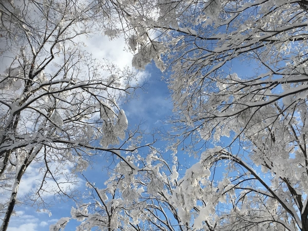 2017-12-18 雪景色2