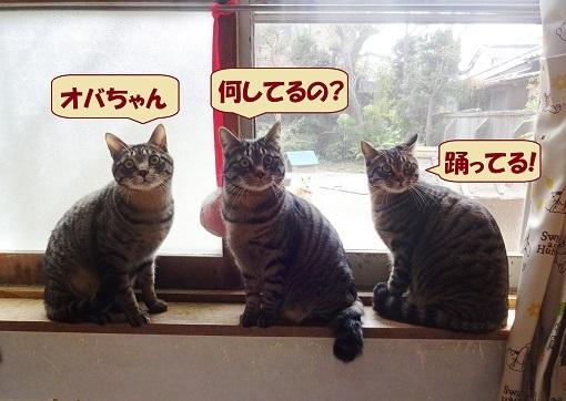 ピピック・イチカ・ヨカ2
