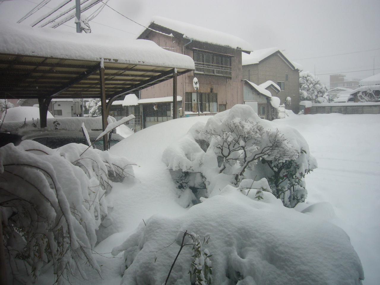 久しぶりの大雪 H30.1.13