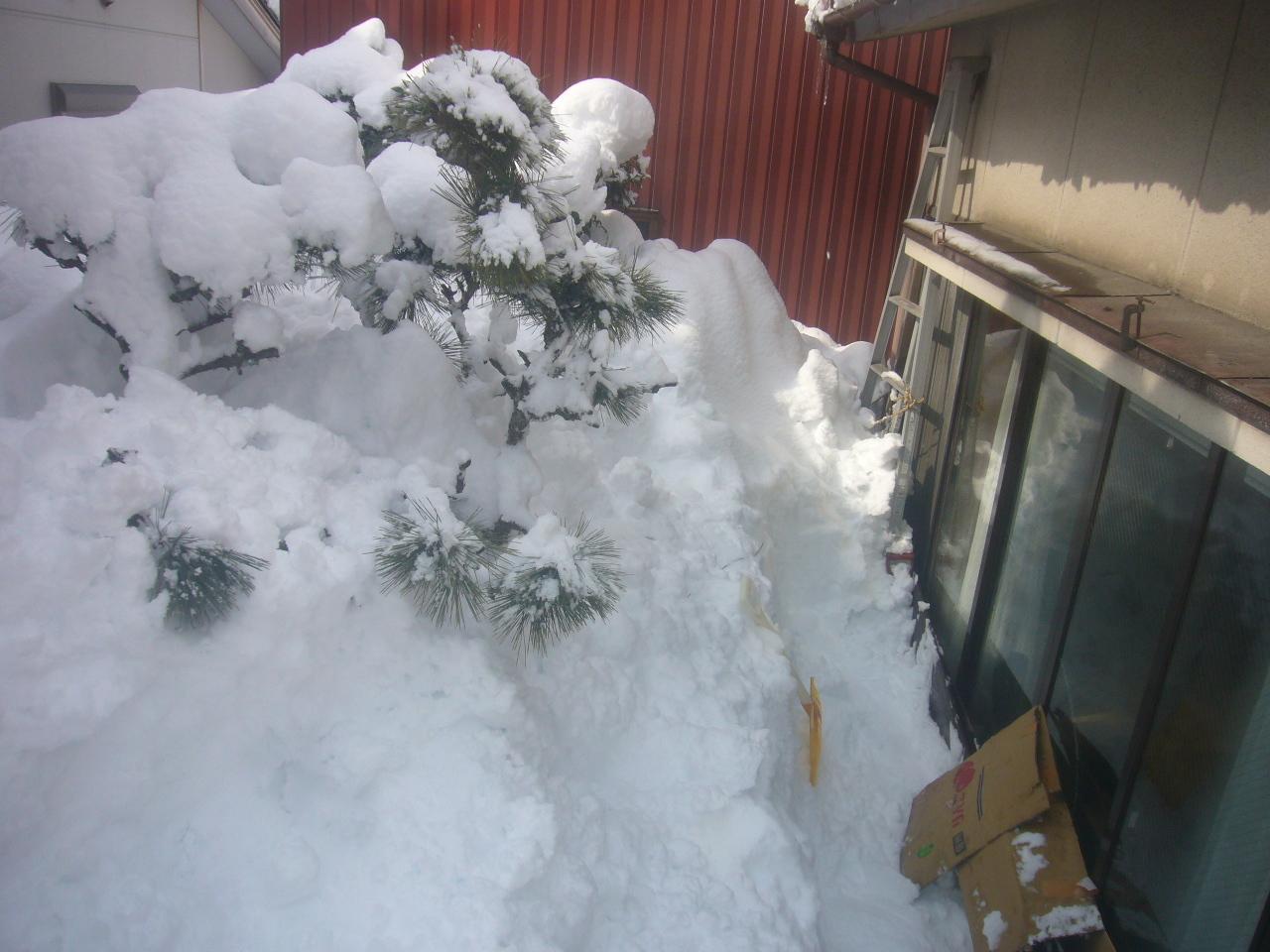 雪山 H30.2.08