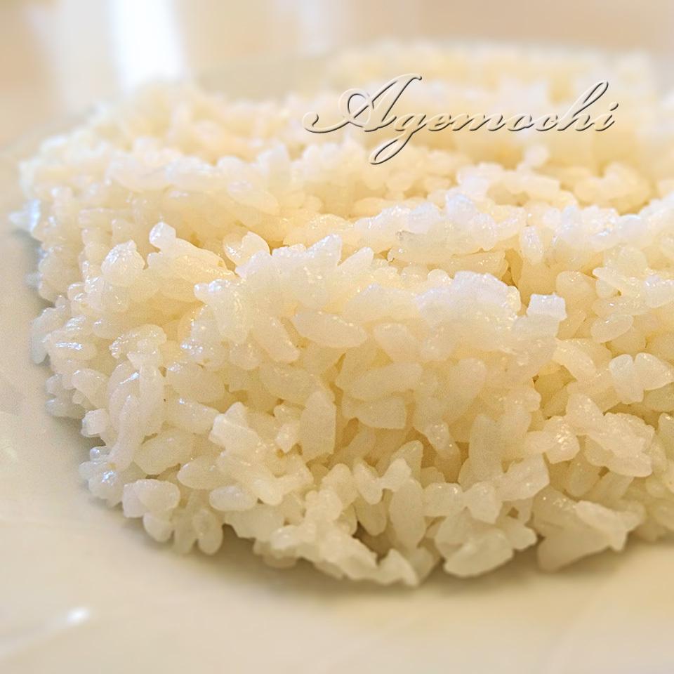 bruno3_rice.jpg