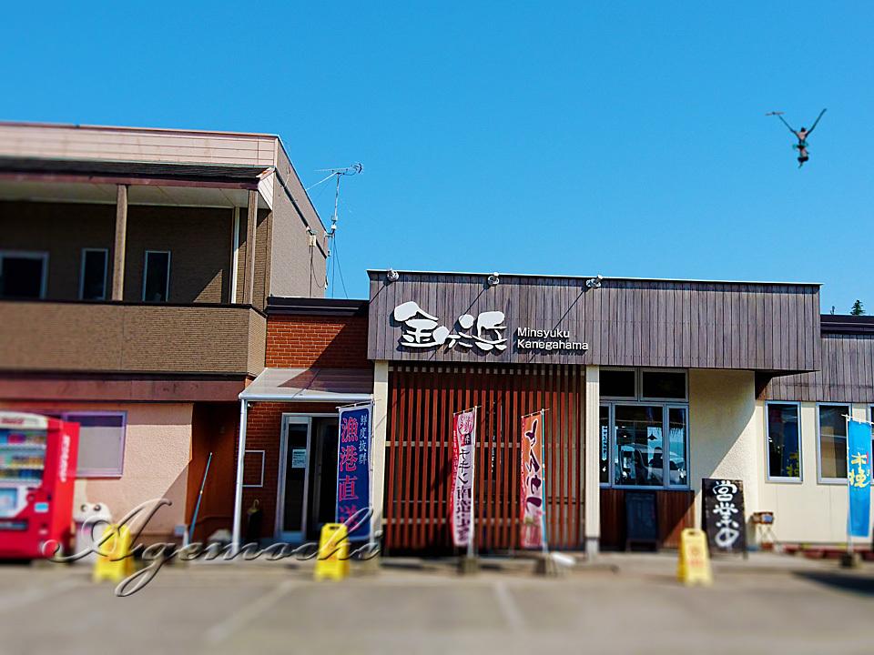 kanegahama_shop.jpg