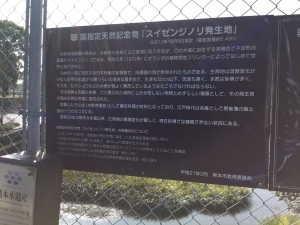 水前寺海苔発祥の地