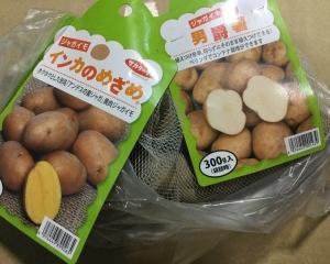 種ジャガイモ購入