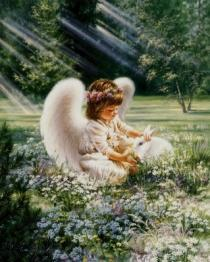 Baby-angel-in-forest_convert_20140711200340_20180218144545d36.jpg