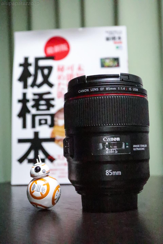 85mmf1_4canon-1.jpg