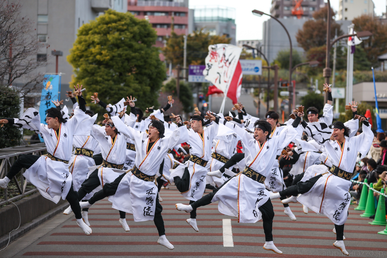 kabuto2017oyapm-11.jpg