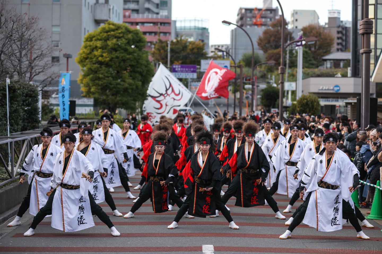 kabuto2017oyapm-13.jpg