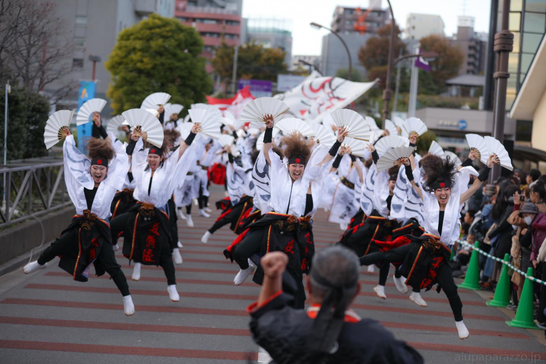 kabuto2017oyapm-29.jpg