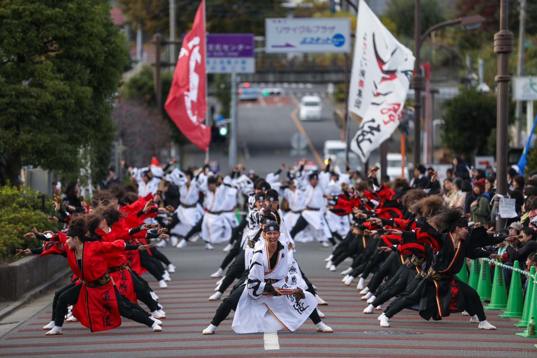 kabuto2017oyapm-6.jpg