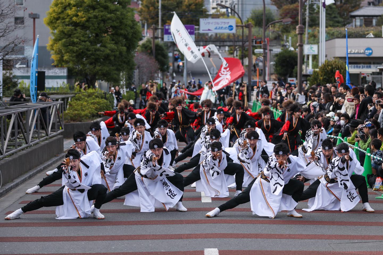 kabuto2017oyapm-9.jpg