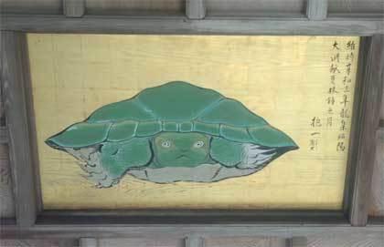 20170707_enoshima_043.jpg