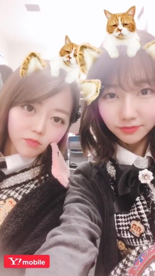 yuki_s180212_2.jpg