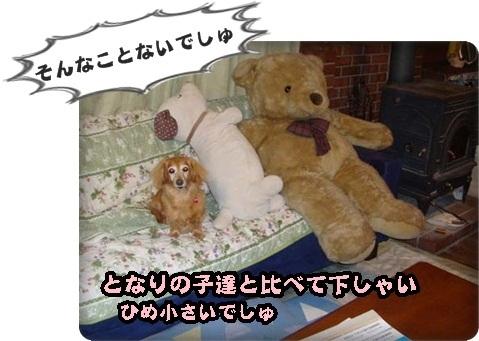 30年ひめ3DSC08560