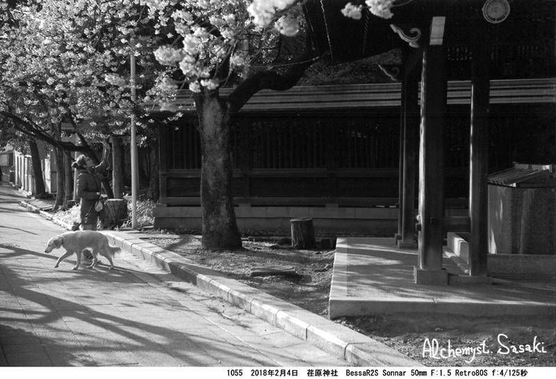荏原神社1055-17