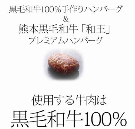 AF5100005030.jpg