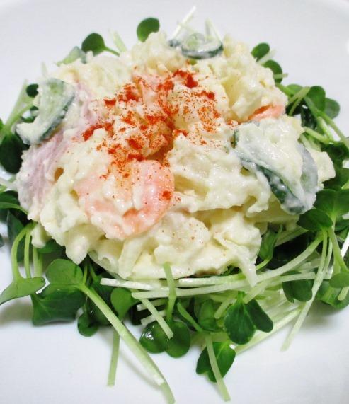 パプリカポテトサラダ B