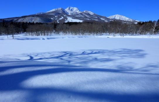 木立の影と妙高山