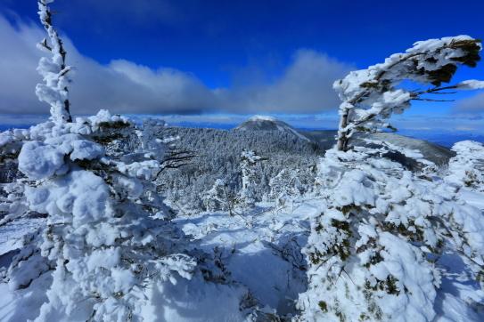 樹氷と蓼科山
