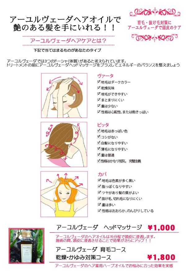 hairoilspa.jpg