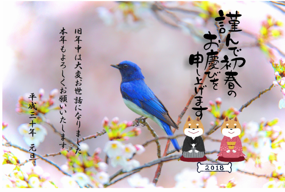 20171230214351abd.jpg
