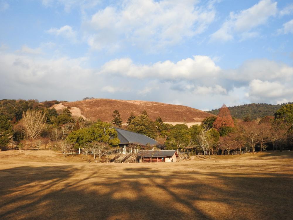 若草山DSCN7739