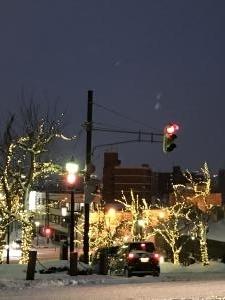 函館・光のイルミネーション2