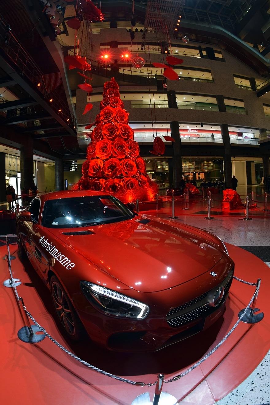 赤いクリスマスツリー (007)