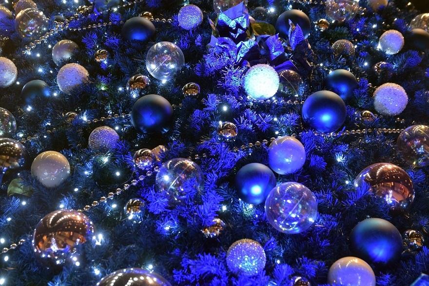 青いクリスマスツリー (5)